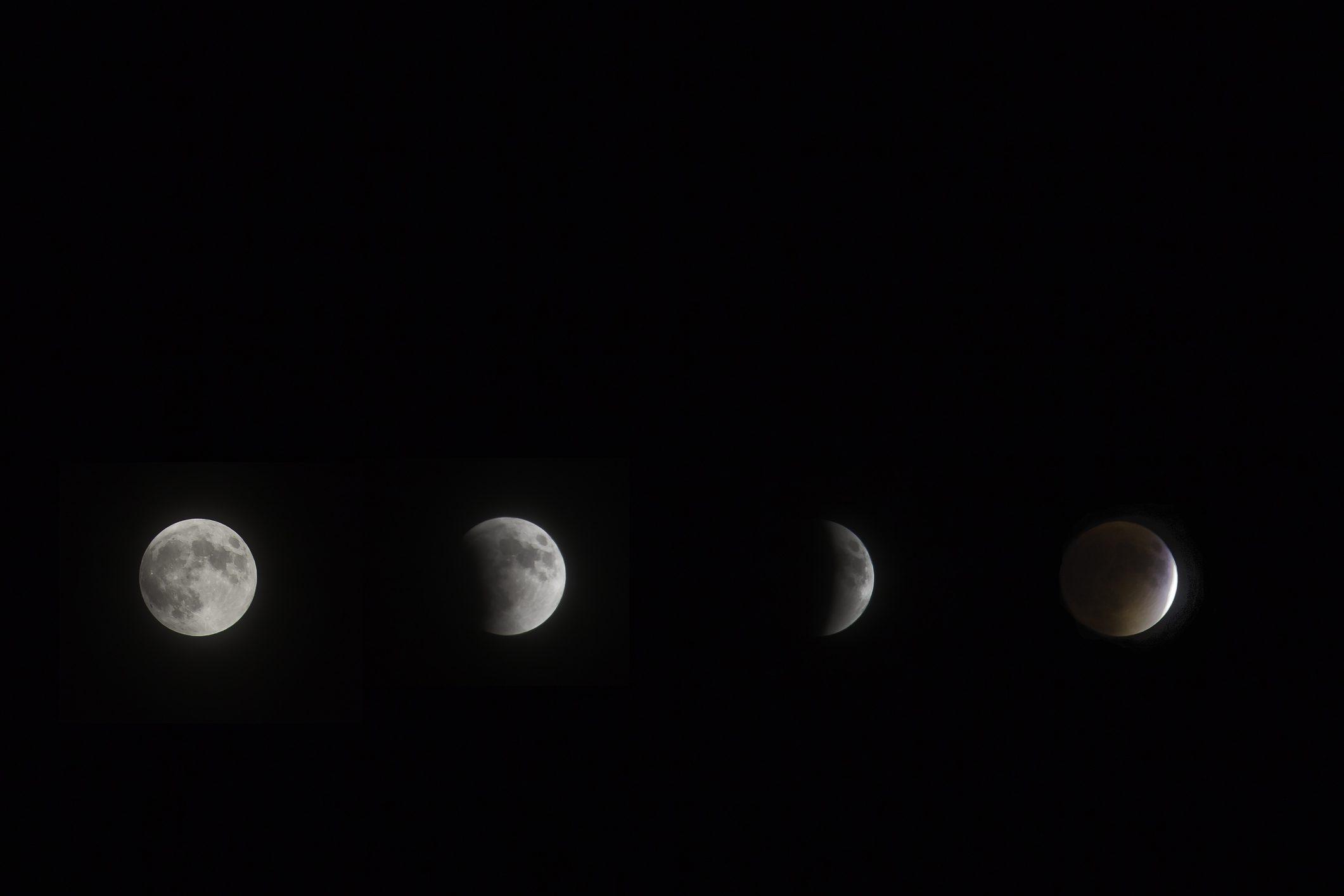 Calendario Lune.Il Calendario Lunare Da Conoscere Prima Di Tagliare I