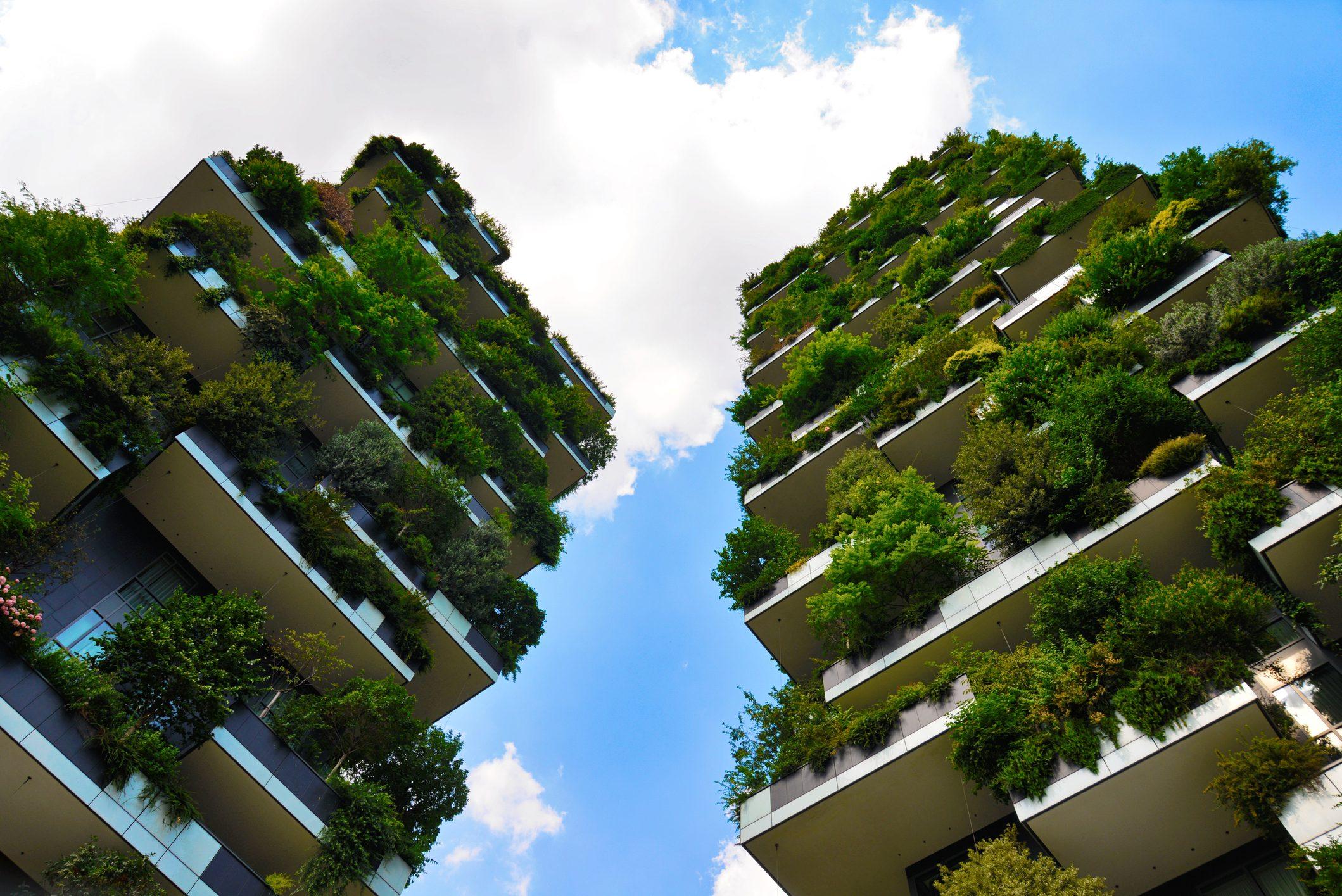 Foto Bosco Verticale Milano il bosco verticale a milano, simbolo di una città sempre più