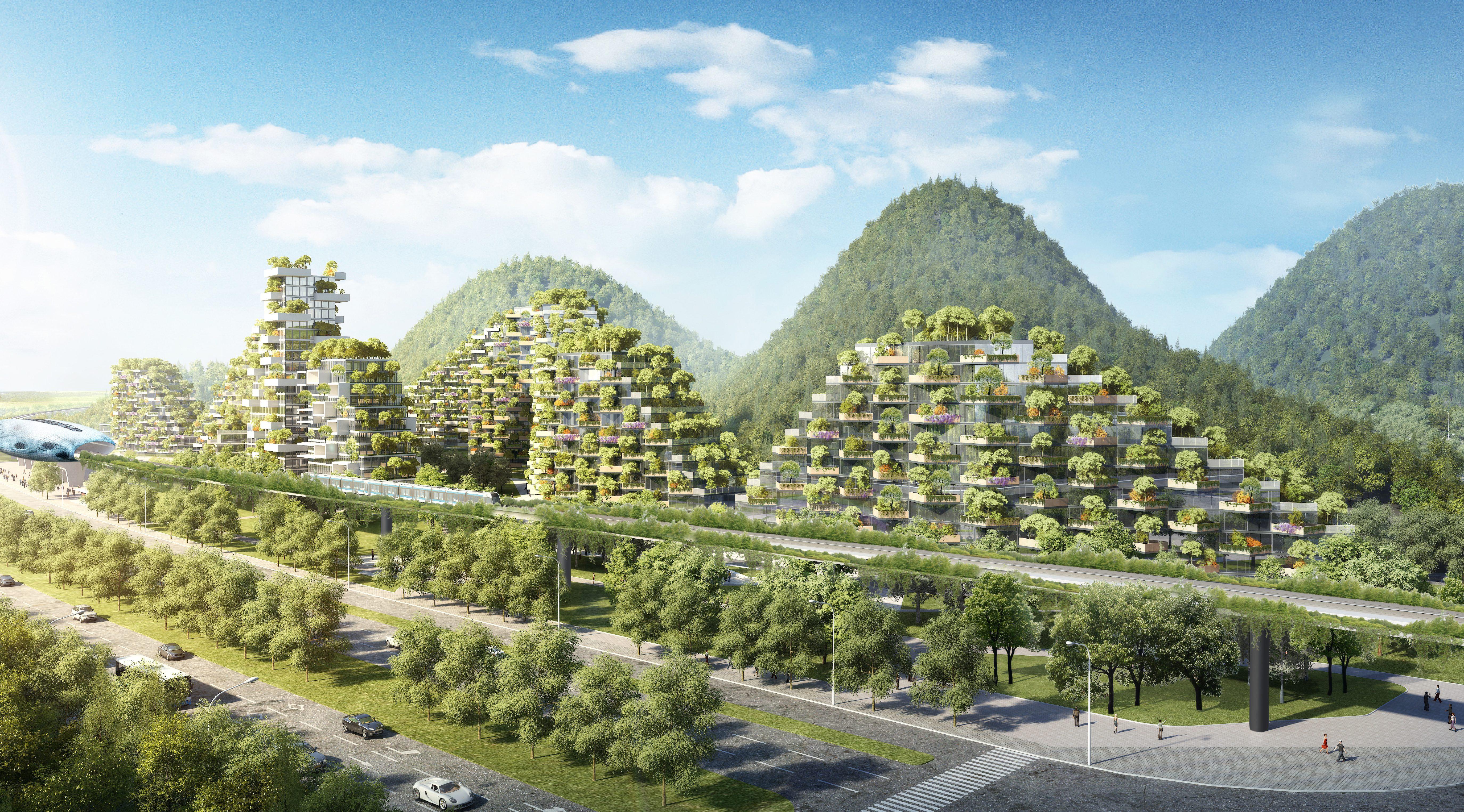 Immagini Di Piante E Alberi liuzhou forest city: la città verde con 40.000 alberi e un