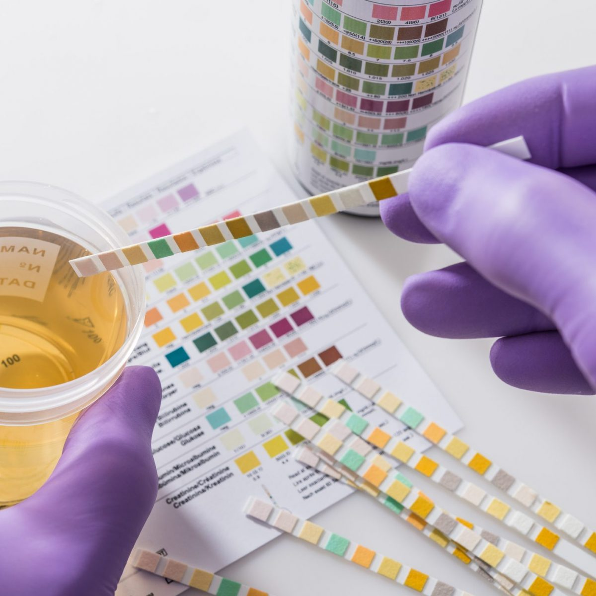 cane ribadito minzione sangue nelle urine