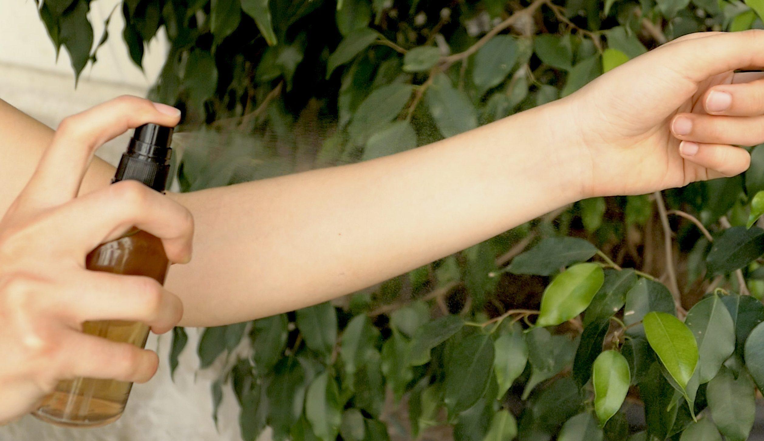 Prodotti Efficaci Contro Le Formiche tieni lontane formiche, mosche e zanzare con prodotti fai da te semplici e  naturali