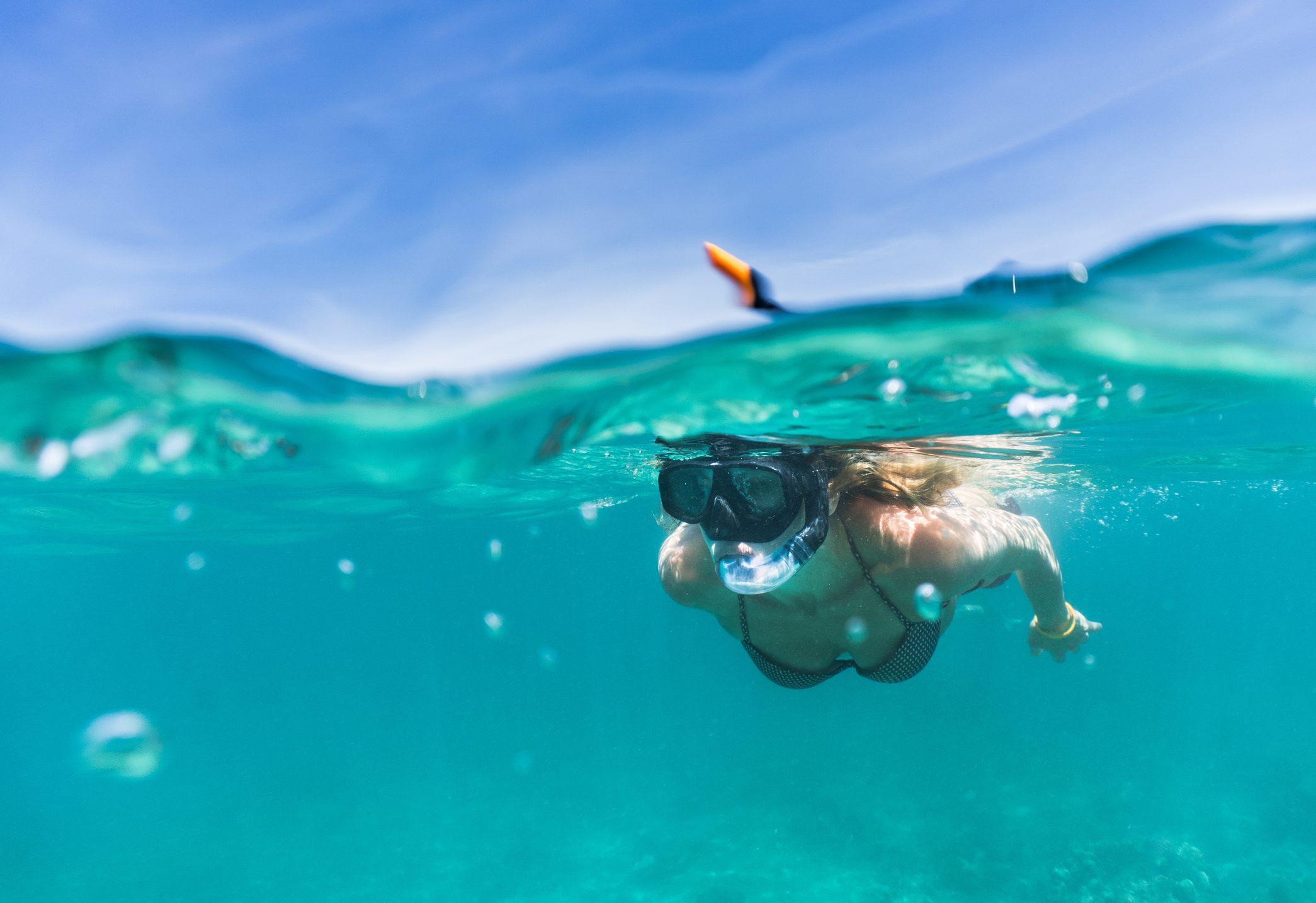 snorkeling-dove-farlo-cover