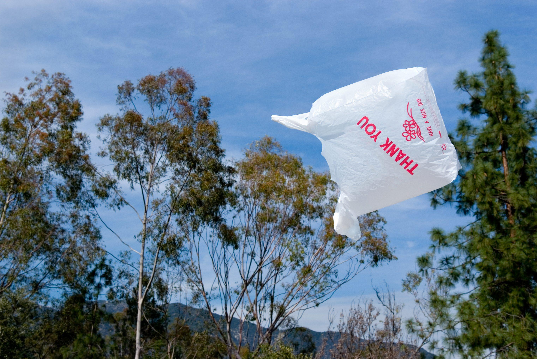 sacchetti di plastica diventano pom pom